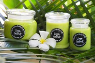 Lime & Coconut Candle Range