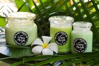 Lemon Myrtle Candle Range